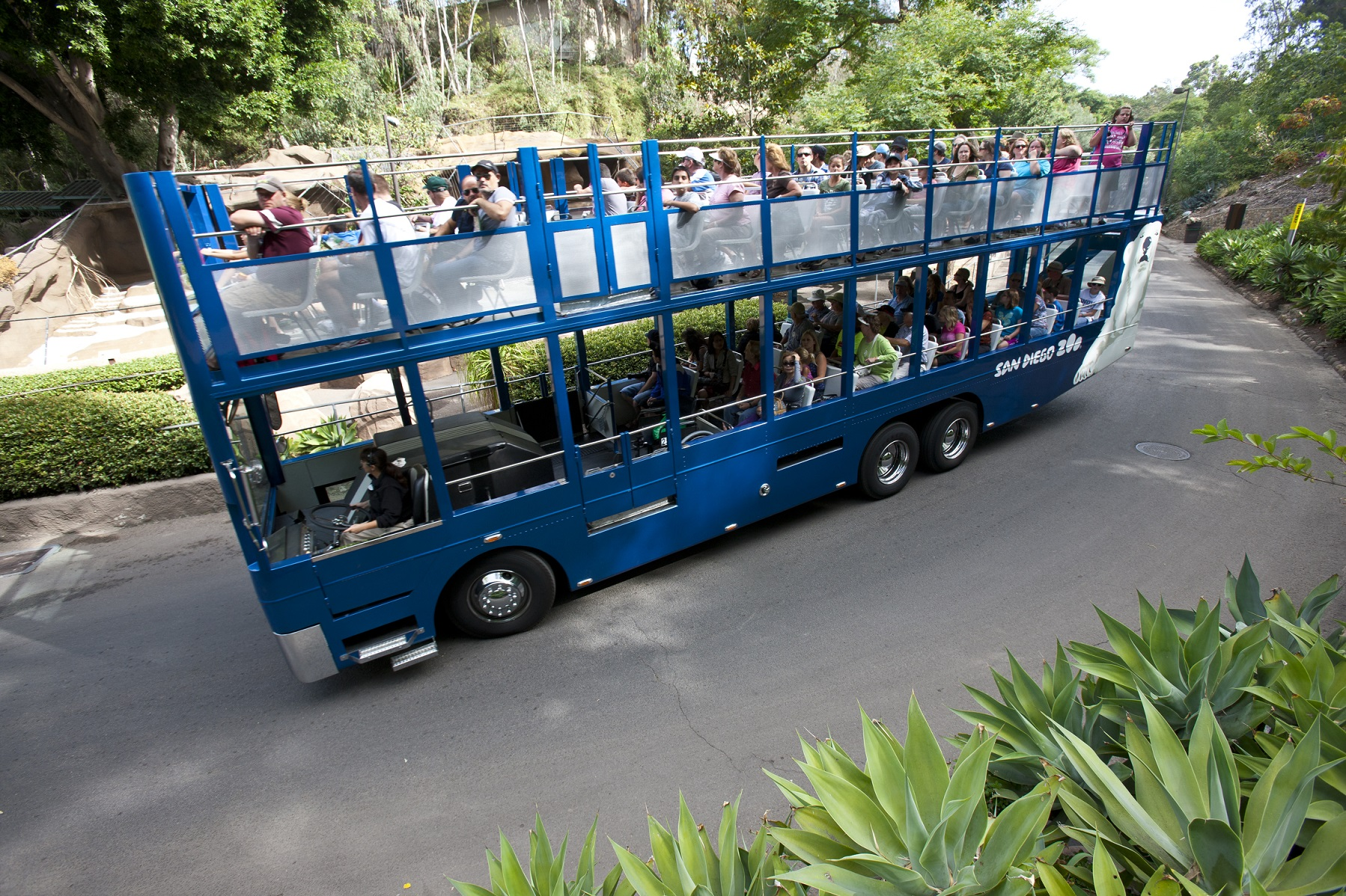 Zoo guided bus tour