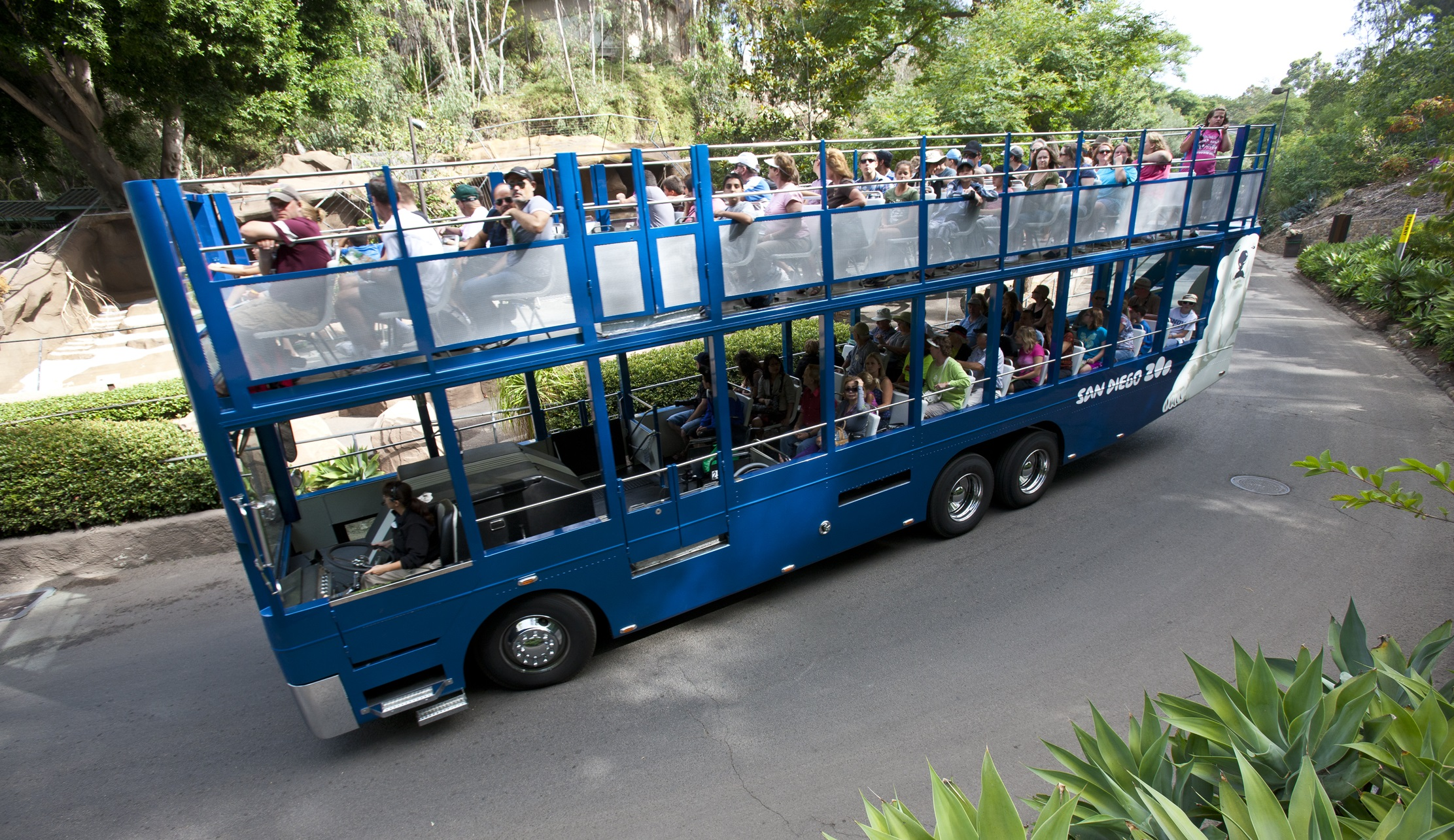 Zoo Bus Tour